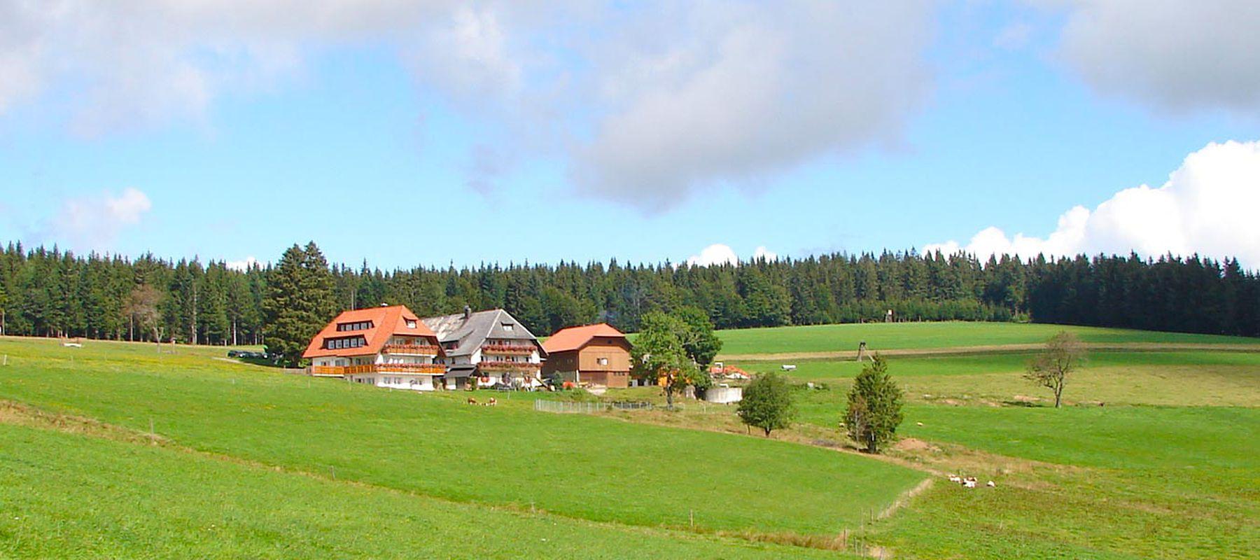 Ferien Bauernhof St. Peter