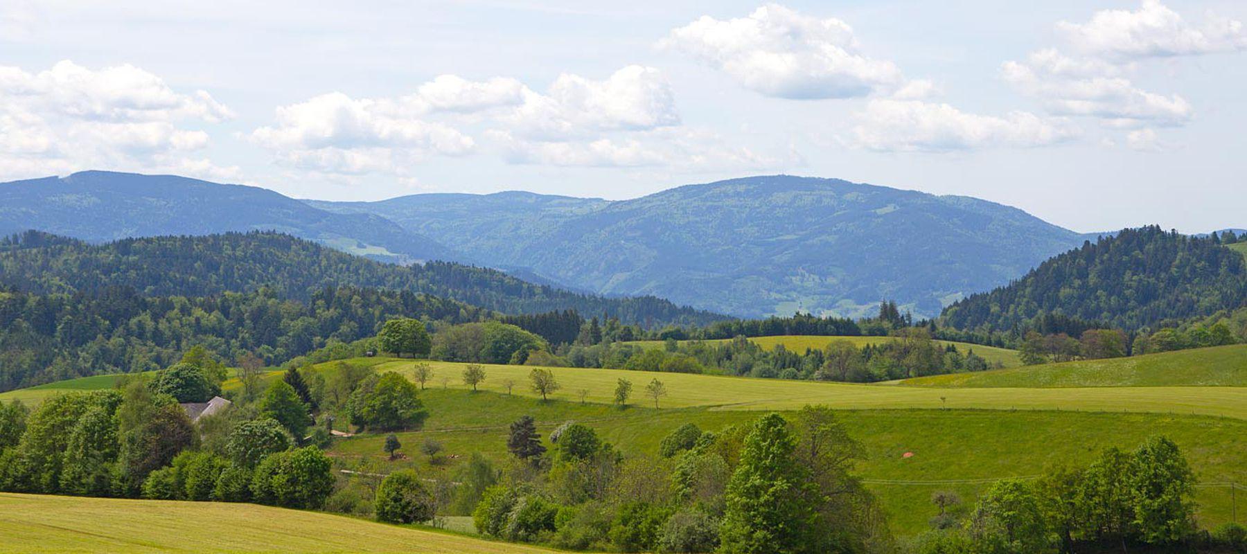 Ferien Bauernhof Hochschwarzwald St. Peter