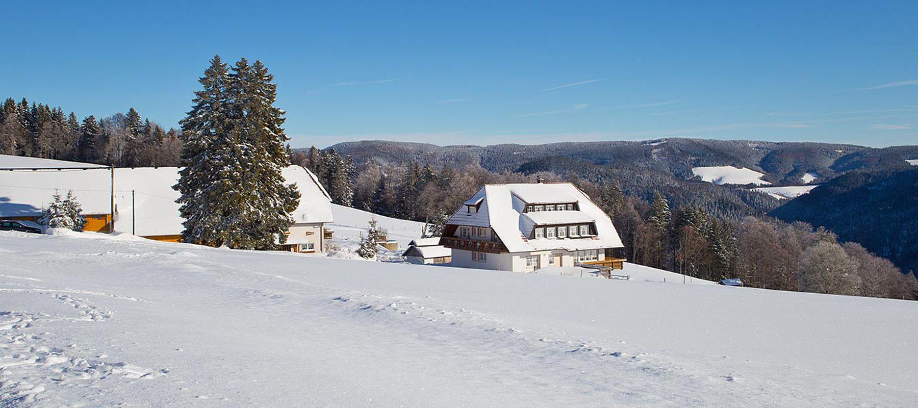 Schwarzwald Winter Ferienwohnung